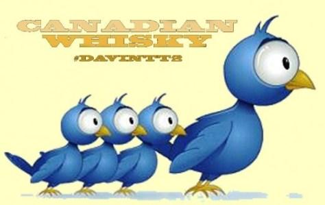 Twitter-birds-DavinTT2-523x330